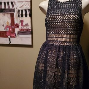 Francesca's Navy lace overlay and cream dress